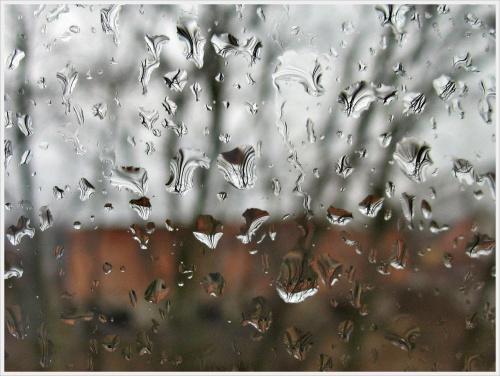 w marcu jak w garncu- trochę deszczu... #deszcz