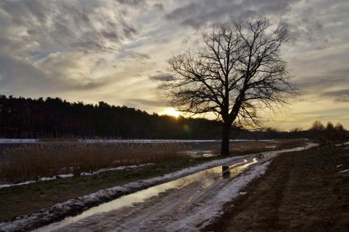 #zalew #zima #odwilż #styczeń #krajobraz