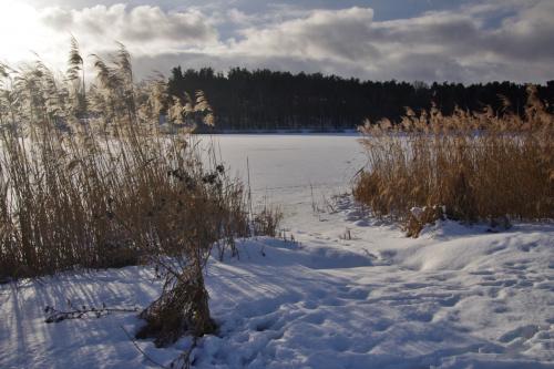 """jeszcze przynudzę zimą sprzed odwilży, bo nowego jej oblicza, zgodnie z zapowiedziami """"chmurek"""" i """"wicherków"""", nie ma :) #zalew #zima #niebo #styczeń"""