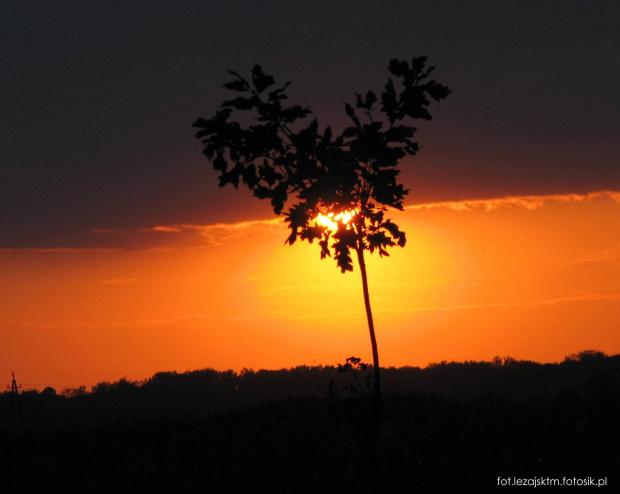 Zachód słońca #chmury #krajobraz #lezajsk #lezajsktm #leżajsk #niebo #przyroda #słońce #widok #zachód