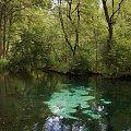 #woda #NiebieskieŹródła #TomaszówMazowiecki
