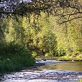 u mnie zimno, jesiennie i kolorowo ... witam po przerwie ... :)) #rzeka #Opava #jesień #Chomiąża