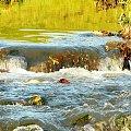 Luboń kaskada na potoku. #Luboń #potok