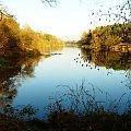 Jeszcze raz Warta w lesie. #rzeka #Warta