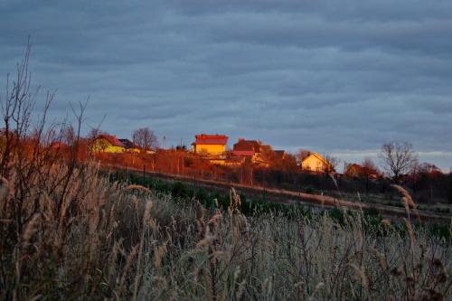 #jesień #Lubsko #trawy #niebo #domy