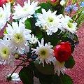 3.12.2009 Urodzinowy bukiet kwiatów dla FABIA #kwaiaty