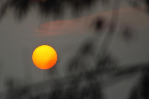 grudniowe słońce #zima #grudzień