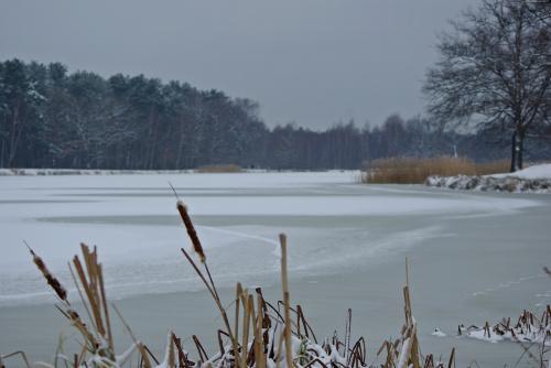 noworoczny spacer nad zalewem zaliczony :) #zima #zalew