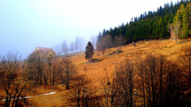 Śniegu ni hu hu ... (w Siennej teren narciarski Czarna Góra gmina Stronie Śląskie)