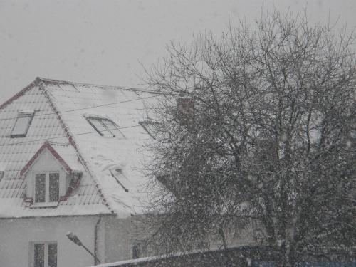 Pada,pada śnieżek biały...