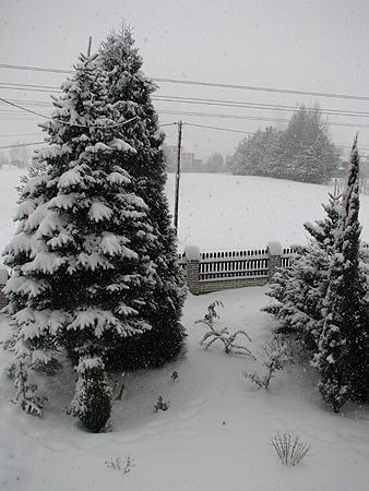 zimowo2