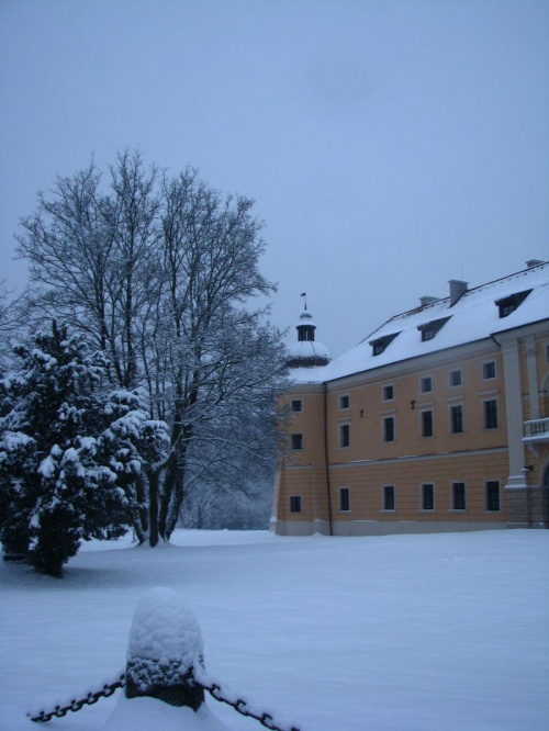 w zimowej szacie ;)