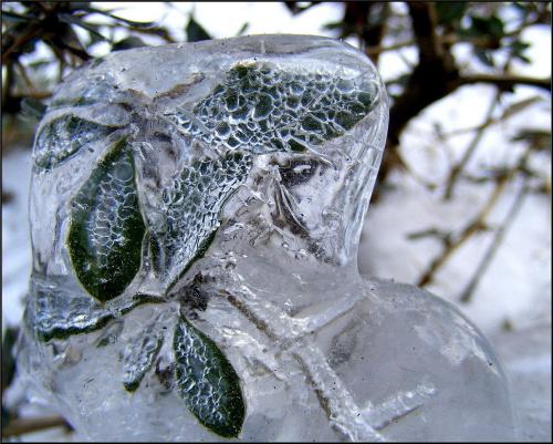 hibernacja..byle do wiosny..;)