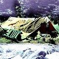 Sierpień 1969, biwak w Dolinie Jaworowej, suszenie. #biwak #góry #turystyka