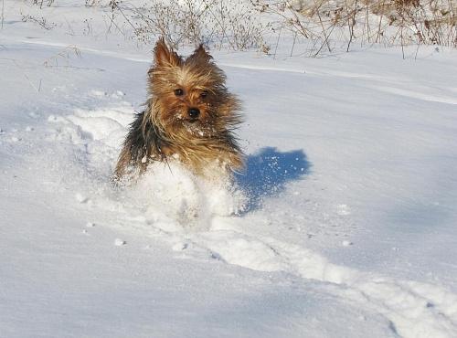 na śniegu najlepiej :)