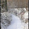 Zima w WPKIW Chorzów #zima #park #wpkiw