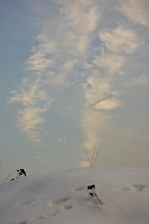 #zima #śnieg #niebo