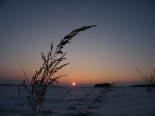 na każdej fotce słońce mam z otoczką...... #słońce #zachód