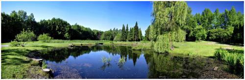 #panorama #park #staw #drzewa #woda