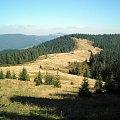 Polana Podskały w Gorcach #BeskidSądecki #BeskidWyspowy #beskidy #gorce #góry #pieniny