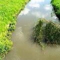 rz. Ślęza we Wrocławiu #rzeki