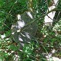 Pianki - Dawny Cmentarz Ewangelicki #Pianki