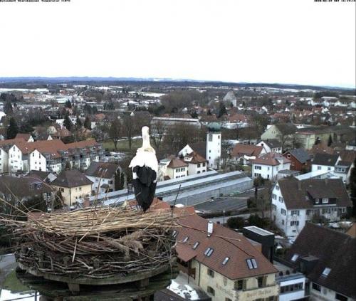 Aulendorf/de
