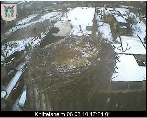 Knittelsheim/de