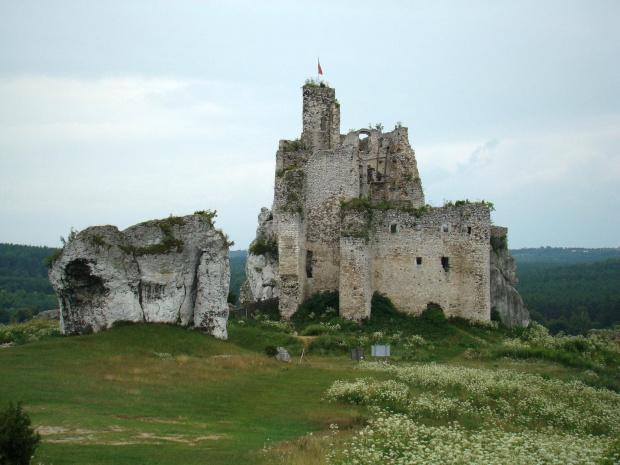 Ruiny zamku w Mirowie na szlaku Orlich Gniazd. #Mirów