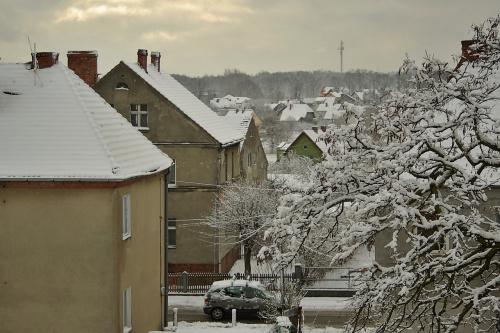 15 marca- a ona, tzn. zima, sobie trwa :) #zima #śnieg #marzec