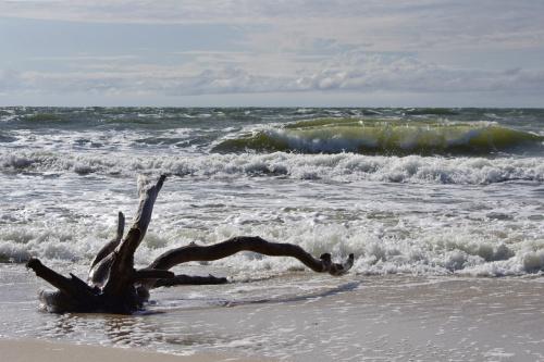 #morze #Bałtyk
