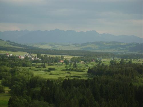 Tatry z przełomu Białki #FaunaIFlora #Jura #MartwaNatura #śmieszne