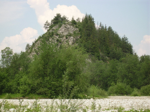 czołówka Janosika #FaunaIFlora #Jura #MartwaNatura #śmieszne
