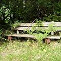W ogrodzie #FaunaIFlora #Jura #śmieszne #MartwaNatura