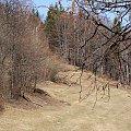 Jawornik, Kiczera, Beskidy #Jawornik #Kiczera #Beskidy #xnifar #rafinski