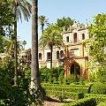 Ogrody Alkazaru w Sewilli #Andaluzja #Sewilla