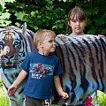 Tygrysiątka... #arietiss #dzieci #ludzie #portret #tygrys