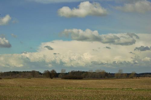 ... #pola #niebo #wiosna