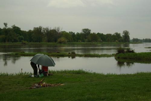 #Odra #rzeka #wiosna #maj #CzasWolny #relaks #odpoczynek #wędkarstwo