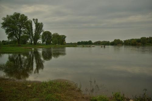 a to jeszcze z wypadu nad Odrę #Odra #rzeka #wiosna #maj #drzewa
