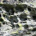 4.08.2007 Okolice schroniska, kawerny w skale, efekt wietrzenia i działania wody. #erozja #skały