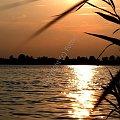 Barwy lata... #fotoel #ZachódSłońca #lato #jezioro #woda #wakacje