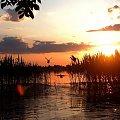 #fotoel #ZachódSłońca #PtakiWodne #jezioro #woda #lato