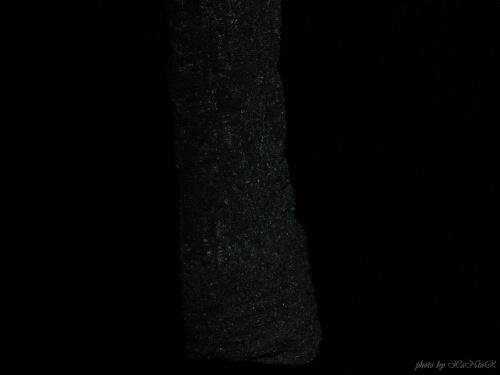 Czerń to tylko pozory #makro #czarne #czerń #black #czarno
