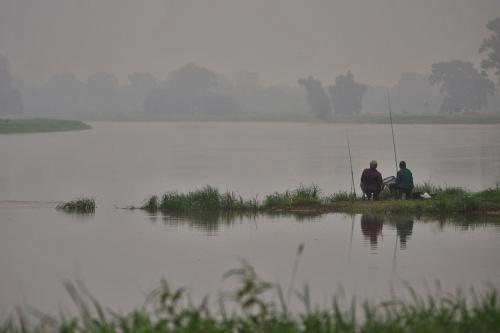rano nad Odrą #Odra #rzeka #mgła #wędkowanie