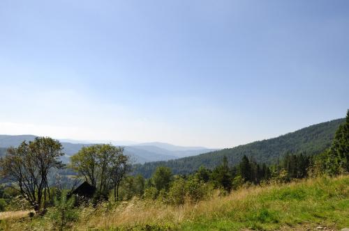 Szczyrk #szczyrk #góry #las #drzewa