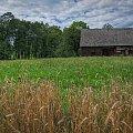 Chata wśród pól... #chata #wieś #lato #natura #arietiss