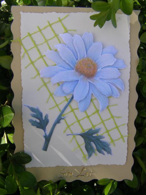 #hobby #kartki #rekodzieło #robótki
