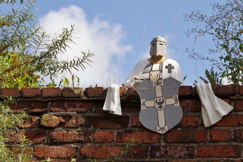na murach Torunia #Toruń