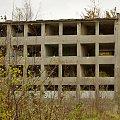 """w ruinach też jesiennie (pozostałości po byłych Zakładach Przemysłu Włókienniczego """"Luwena""""; to był biurowiec; po halach tylko zwały cegieł porośnięte chaszczami) #Lubsko #ruiny"""